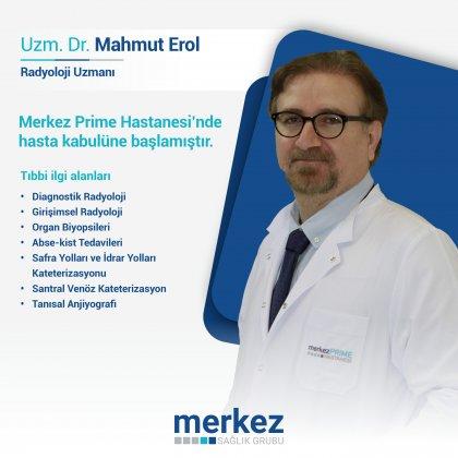 Mahmut Erol